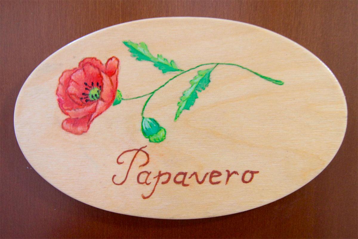 Norcia bb Umbria papavero